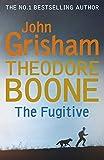 Theodore Boone: The Fugitive: Theodore Boone 5 (English Edition)