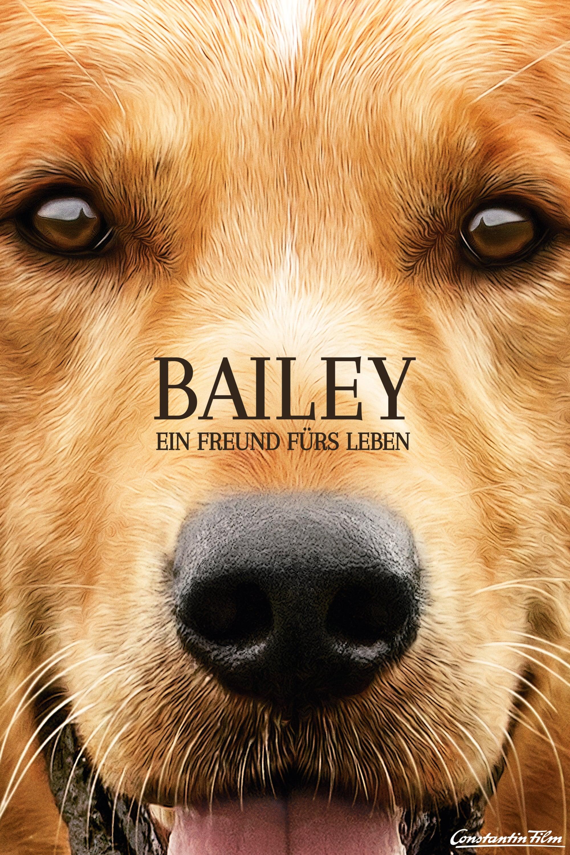 """Plakat von """"Bailey – Ein Freund fürs Leben"""""""