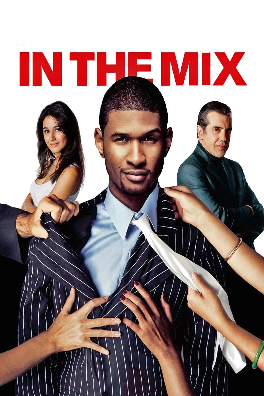 """Plakat von """"In the Mix - Willkommen in der Familie"""""""