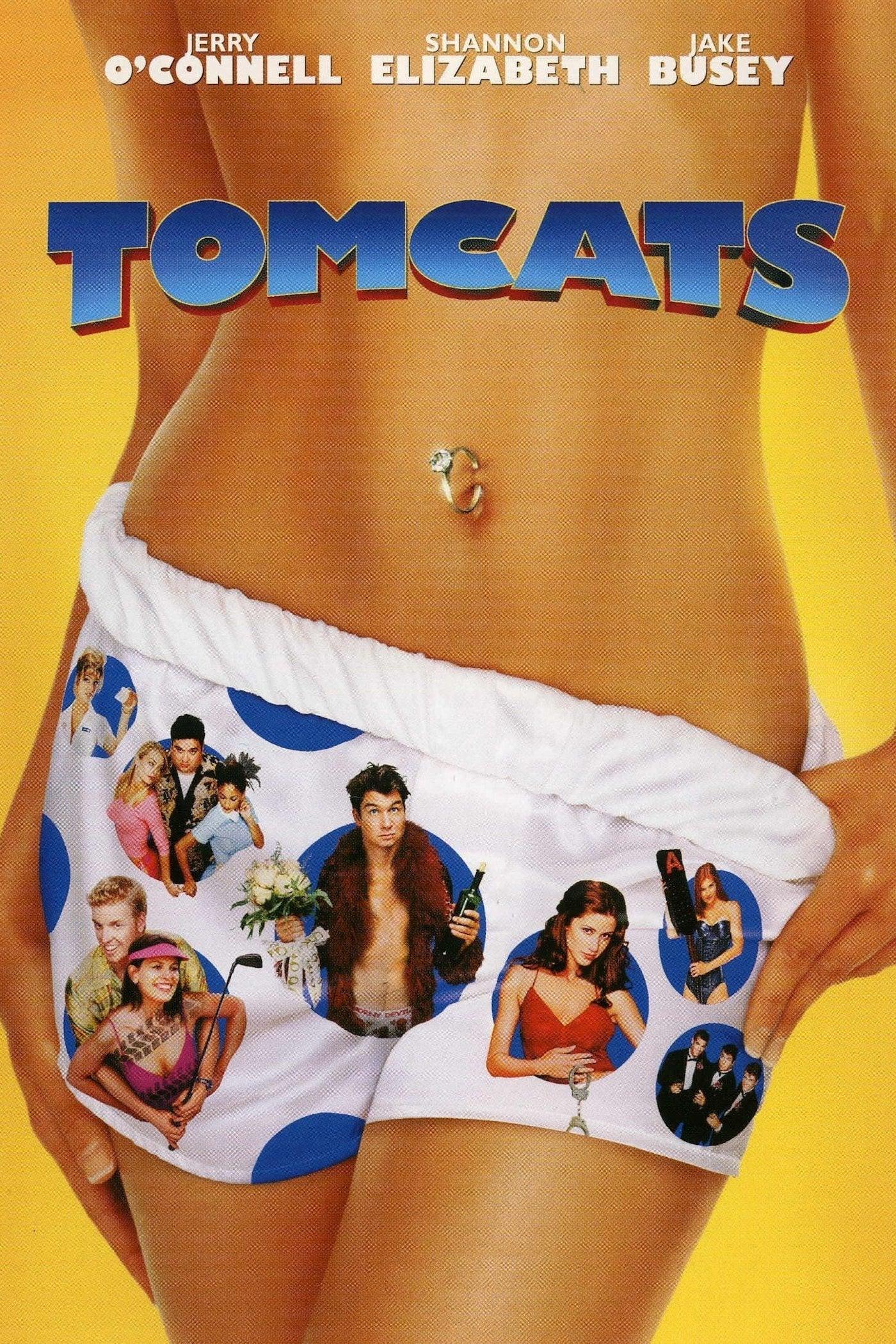 """Plakat von """"Tomcats"""""""