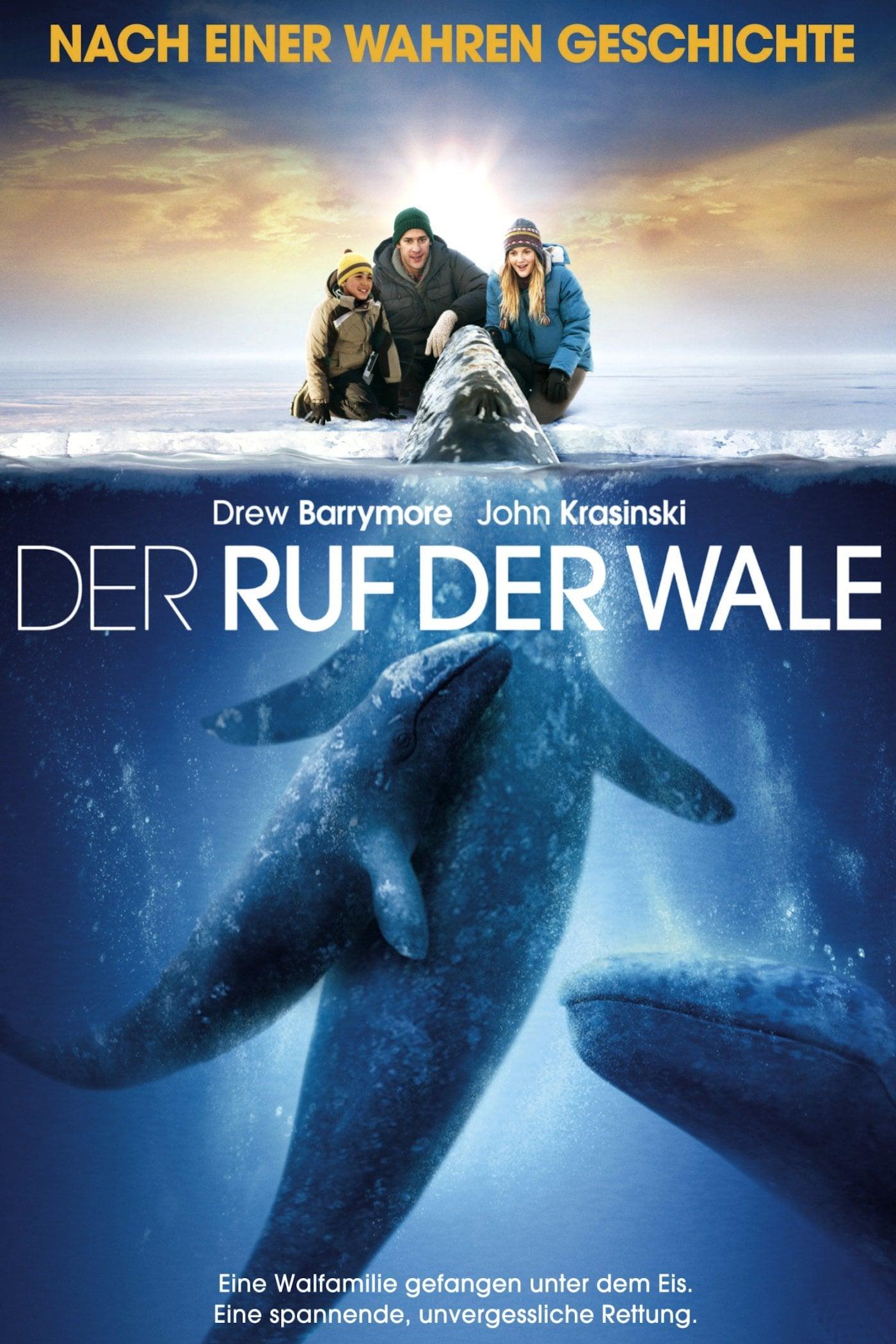 """Plakat von """"Der Ruf der Wale"""""""