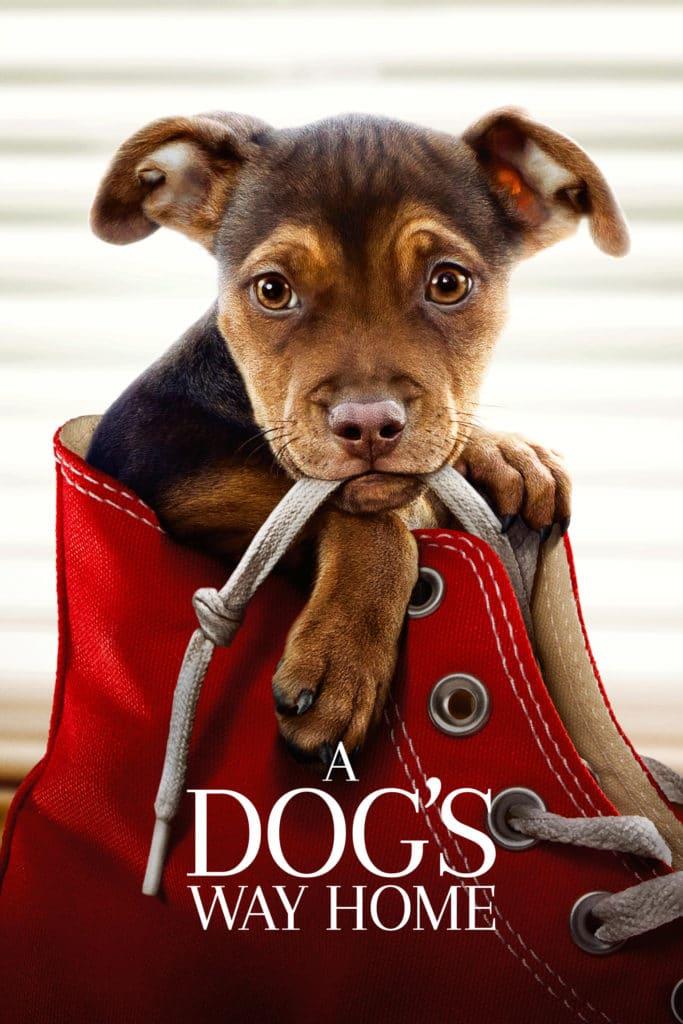 """Plakat von """"A Dog's Way Home"""""""