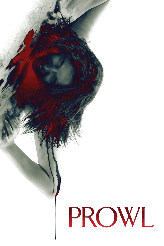 """Plakat von """"Prowl"""""""