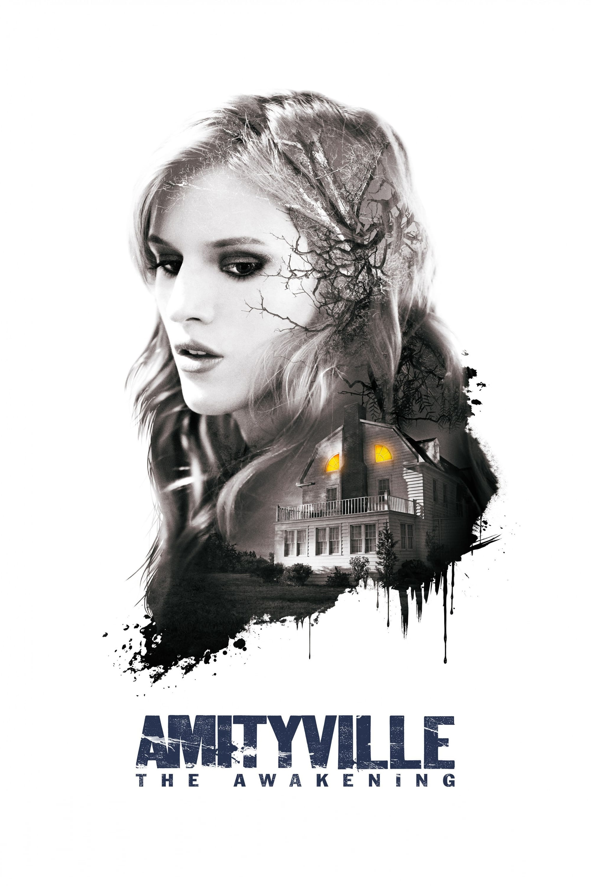 "Plakat von ""Amityville: The Awakening"""