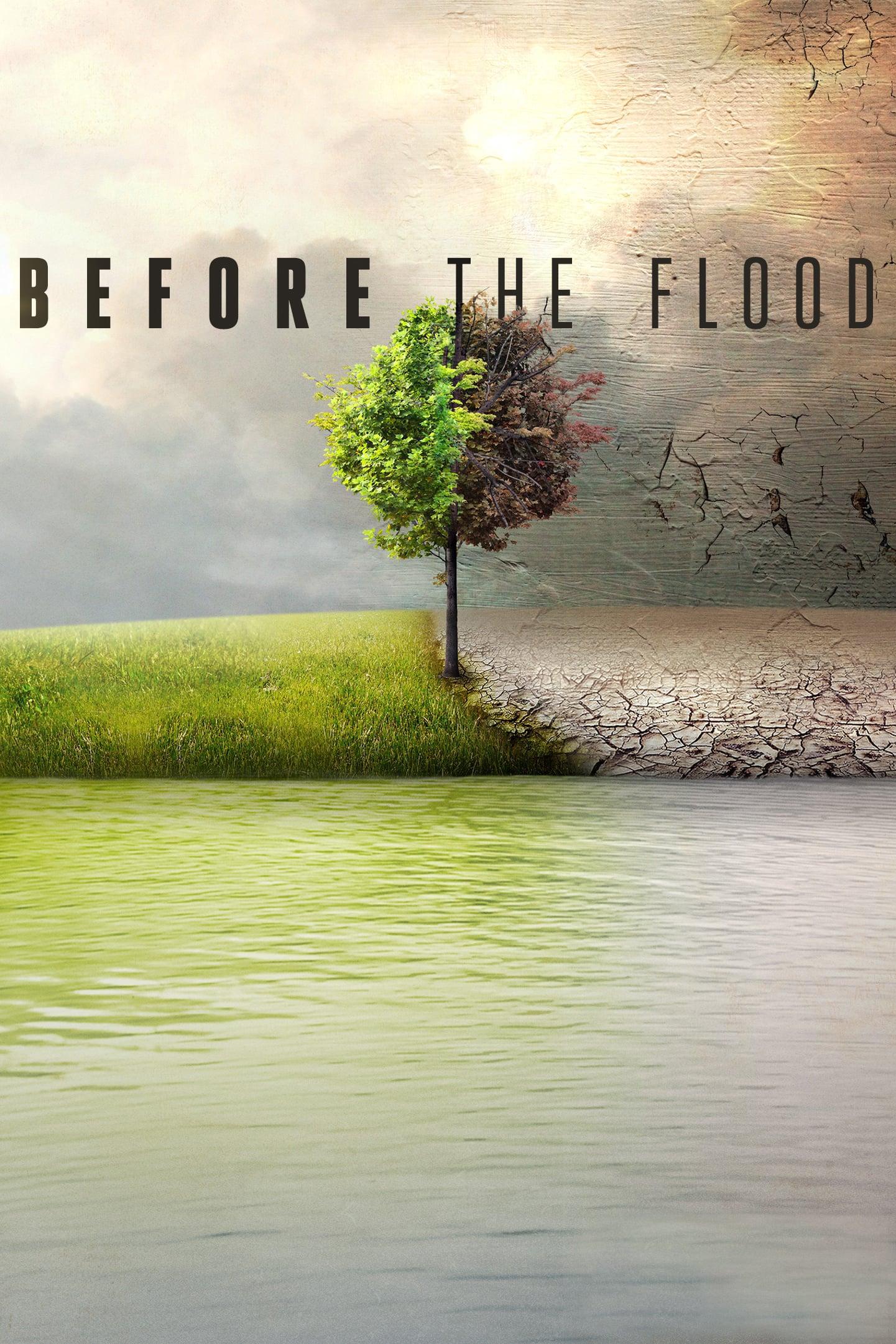 """Plakat von """"Before the Flood"""""""