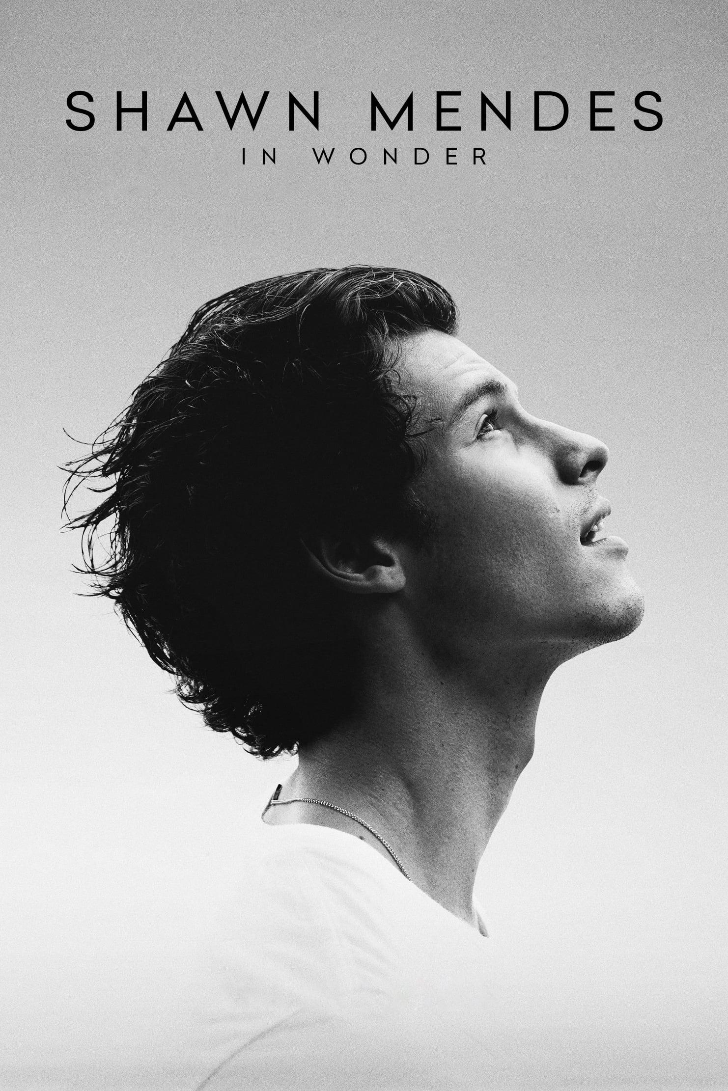 """Plakat von """"Shawn Mendes: In Wonder"""""""